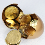 Investment, golden eggs